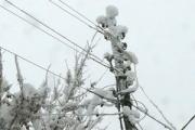 Волгоградские энергетики завершают восстановительные работы на электросетях