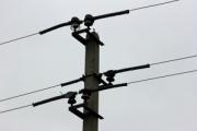 Алтайские энергетики устанавливают птицезащитные устройства